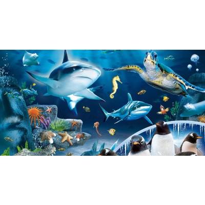 Все для аквариумов и рыбок