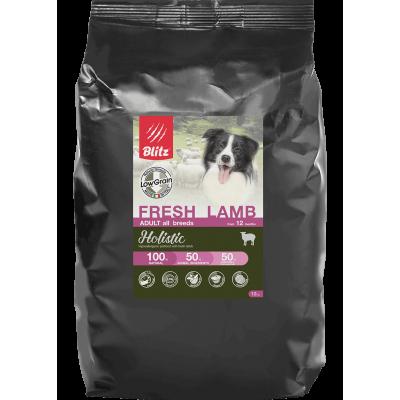 Корм Блиц Холистик для собак: можно ли кормить свою собаку?
