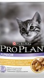 ProPlan паучи для котят (курица), , 60 р., Кошки, Проплан, Проплан