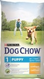 Дог Чау для щенков (курица,рис), , 2 650 р., Собаки, Dog Chow, Dog Chow
