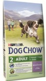 Дог Чау для собак (ягненок,рис), , 2 650 р., Собаки, Dog Chow, Dog Chow