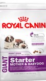 Роял Канин Джайнт Стартер для щенков до 2х мес, , 4 150 р., Собаки, Роял Канин, Роял Канин