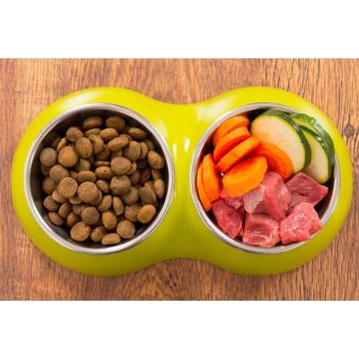 кормление собак: как правильно кормить,  и что нельзя давать собаке?