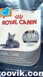 """Роял Канин """"Орал Кеа"""" для кошек (чистка зубов), , 4 990 р., Кошки, Роял Канин, Роял Канин"""