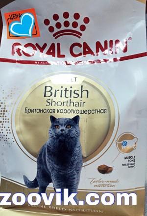 Сухой корм Роял Канин для британцев/шотландских кошек